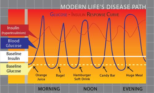 glucoseinsulinresponsehigifoodsdisease