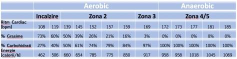 zone de efort si consum grasimi vs carbs